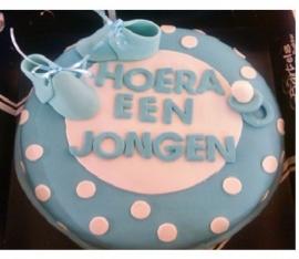 geboorte taart 12 personen