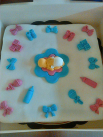 its a boy /its a girl  taart 15 personen