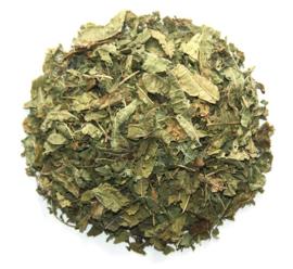 Verbena thee
