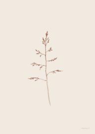 Inkylines Gras beige A6 print