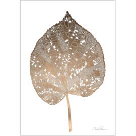 Monika Petersen Mini Art Print Giant Leaf - A5