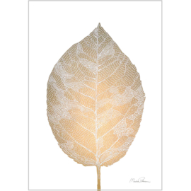 Monika Petersen Mini Art Print Birch Leaf - A5