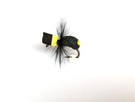Carp Bug