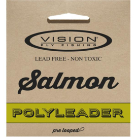 Vision Polyleader Salmon 10ft extra fast sinking