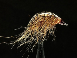 Mimicry Scud Back