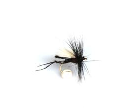 Hawthorn fly (Bibio)