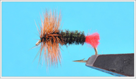 Red Tag Dry Fly