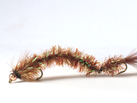 Cactus Børsteorm  brown