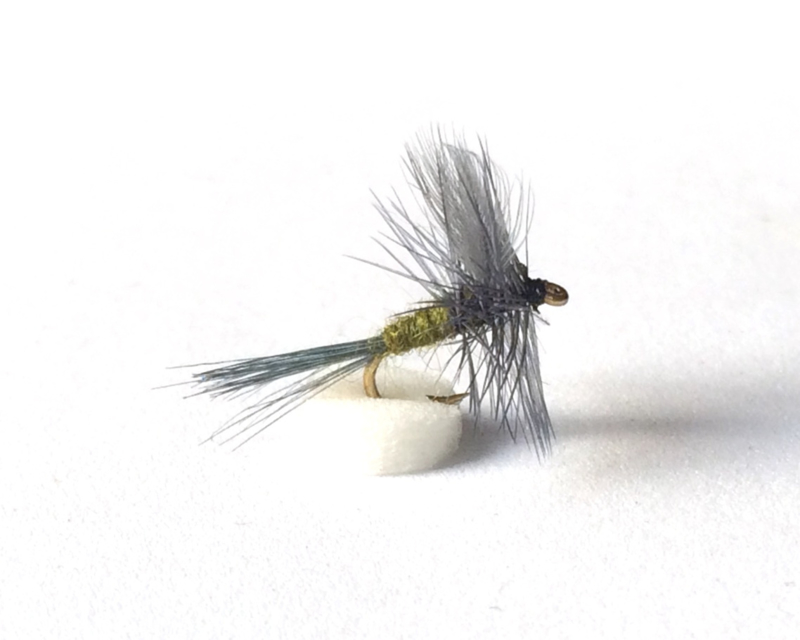 Blue Winged Olive