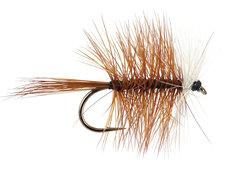 Palmer Bivisible brown