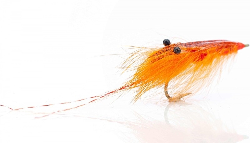 Agerskov mallard Shrimp