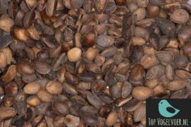 Cedernoten (pijnboompitten) 500gram