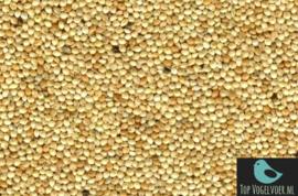Panicum / Panis geel 500 gram