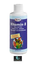 Quiko vitamine B 100ml