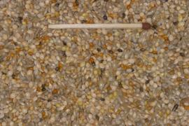 Blattner Kiemzaad voor Amadinen 2,5kg (Keimfutter-Amadinen-Spezial)