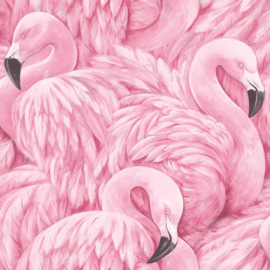 flamingo vogel behangpapier rose  xx15