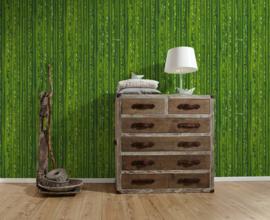 bamboe behangpapıer groen 95936-1