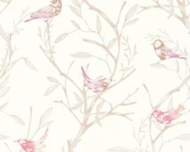 Colibri behang 36623-3 vogels
