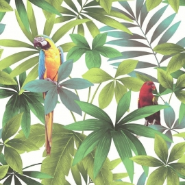 papegaai vogel behang Kaleidoscope j929-14 dieren