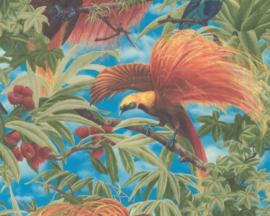 paradijsvogel behang 6954-13