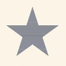 behang 114633 Esta zwart sterren