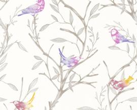 Colibri behang 36623-2 vogels