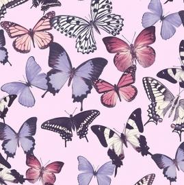 Vlinders Behang roze paars BA2601