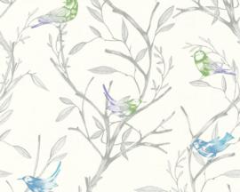 Colibri behangpapier 36623-1 Vogels
