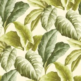 Bladeren Behang Natuur BA2401 groen