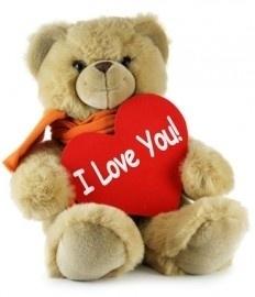 fotobehang art. 70051 Teddybeer
