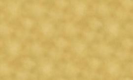 goud lambrisering behang 95474-7