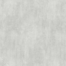 Behang Grijs WU17602