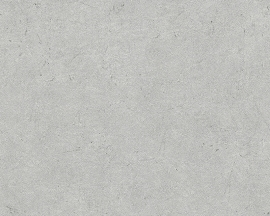 AP Beton behangpapier 96039-2