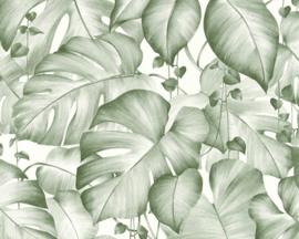 Colibri behang 36627-2 jungle