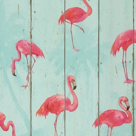 Flamingo Behang  479706