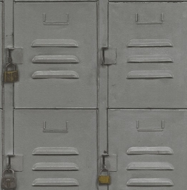 Metalen kasten Grijs Behang 524208