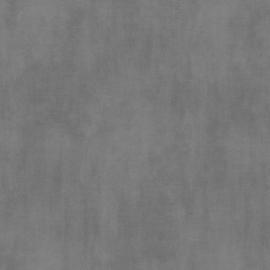 Behang Grijs WU17603