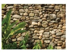 Fotobehang natuur stenen
