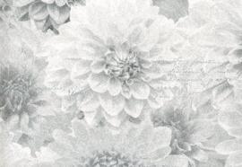 grijs bloemen behang 128505