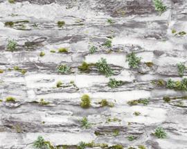 Steen behang grijs natuur groen 36492-2