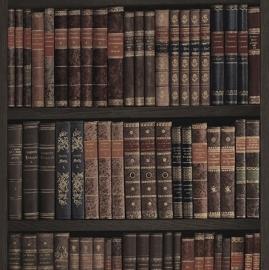 Boekenkast Behang 525809