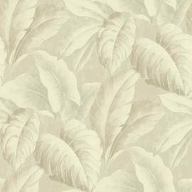 Bladeren Behang Natuur BA2405