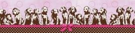 Behangrand dalmatiers