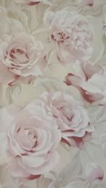 roze rozen behang xx24