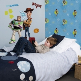 Disney Toy Story behang DF02497