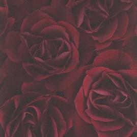 Rozen Behang rood 525625