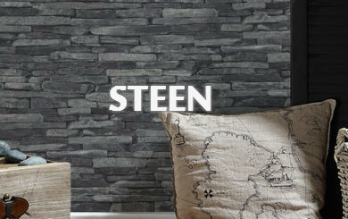 Steen Behang