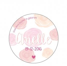 Geboortekaartje Amelle Rond