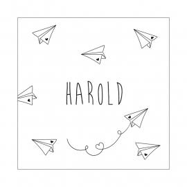 Geboortekaartje Harold Paper Planes