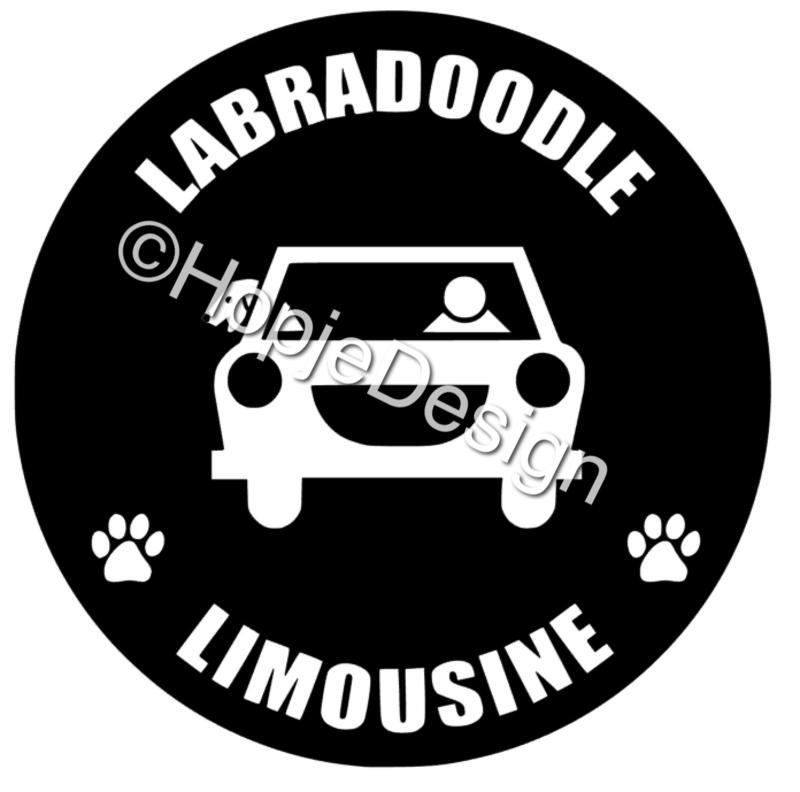 Doodle limousine